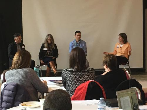 Health and Work Stress panel